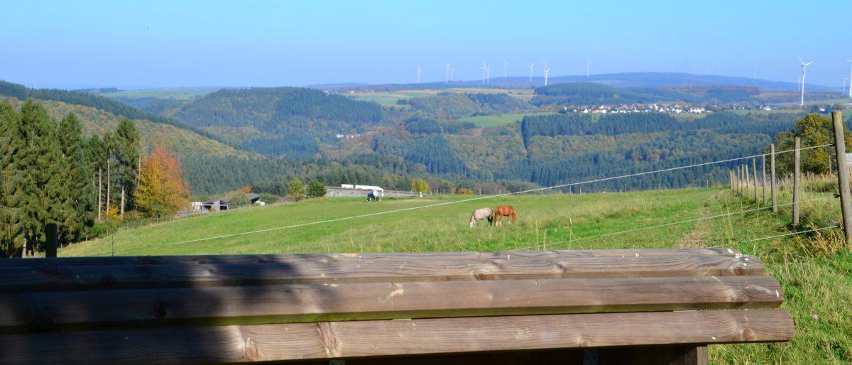 Traumschleife 5-Täler-Tour, Naurath-Wald-Hochwald