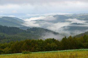 Naurath-Wald Hochwald Nationalparkregion Naturbilder
