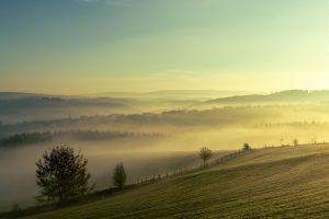 Naurath/Wald, Hochwald, Nationalparkregion, Natur erleben, Rheinland-Pfalz, Region Trier